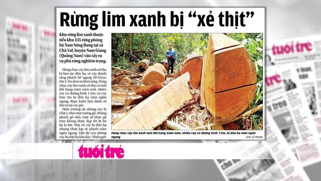 Rừng quý ở Quảng Nam lại bị tàn phá: Trách nhiệm của cơ quan chức năng ở đâu? - Ảnh 1.