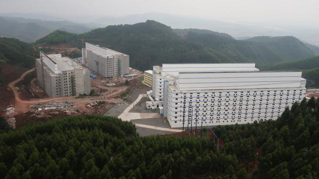 Cao ốc cho lợn - Xu hướng chăn nuôi mới ở Trung Quốc - Ảnh 2.