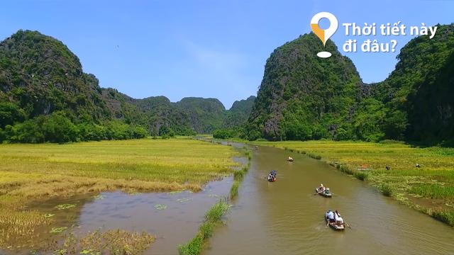 Thời tiết này đi đâu?: Ngắm mùa vàng trên dòng sông Ngô Đồng - Ảnh 1.