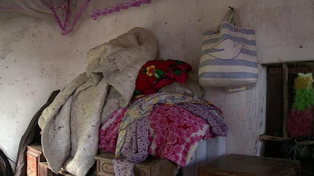 Mẹ già 71 tuổi nuôi hai con điên dại - Ảnh 4.