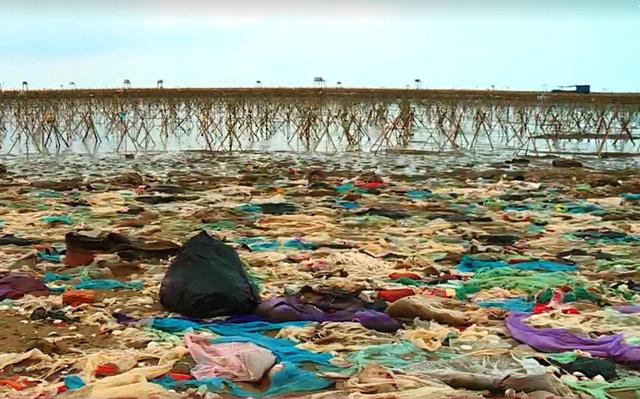 Kinh hoàng ô nhiễm rác tại biển Thanh Hóa - ảnh 1
