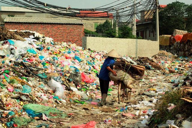 Trực tiếp Thế hệ số 18h30 (5/6): Môi trường ô nhiễm ảnh hưởng thế nào đến cuộc sống? - Ảnh 2.