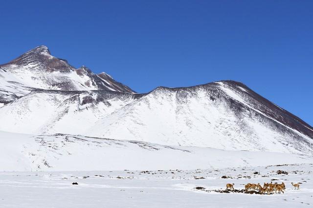 Hy hữu tuyết rơi trên sa mạc khô cằn nhất thế giới - Ảnh 3.