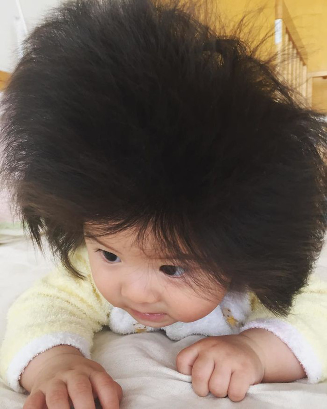 Bé gái 6 tháng tuổi gây sốt vì mái tóc dựng ngược có một không hai - Ảnh 4.