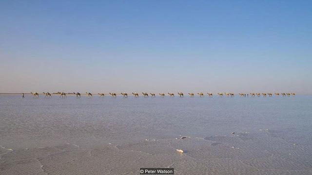 Hồ nước khiến du khách như lạc tới thiên đường - Ảnh 7.