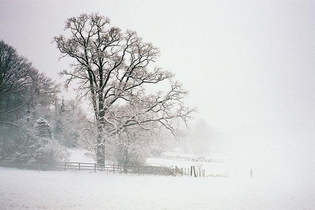 14 lý do bạn nên đến nước Anh một lần trong đời - Ảnh 4.
