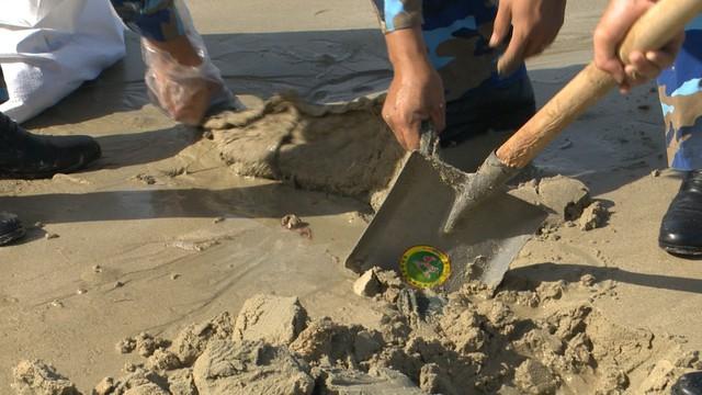 Chung tay làm sạch môi trường biển bảo vệ màu xanh đảo ngọc Cô Tô - Ảnh 3.