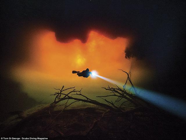 """Những bức ảnh chụp dưới nước đẹp """"ngộp thở"""" - Ảnh 1."""