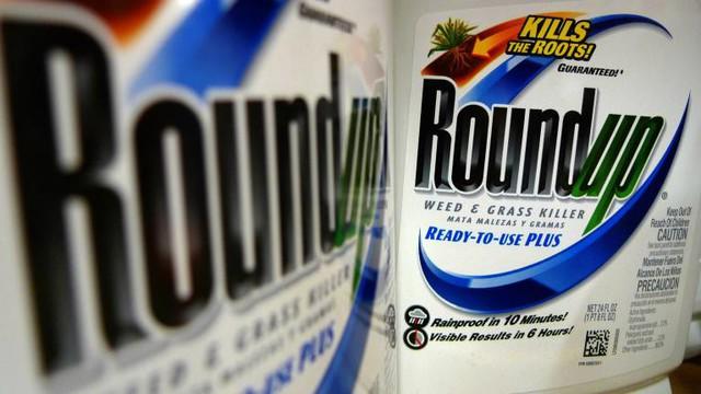 Monsanto phải bồi thường 289 triệu USD vì thuốc diệt cỏ gây ung thư - Ảnh 1.