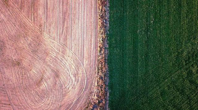 Australia hỗ trợ nông dân bị hạn hán - Ảnh 8.