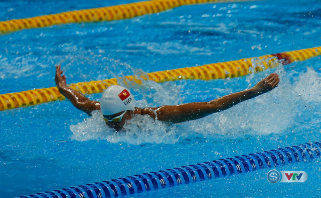 Môn bơi Đại hội Thể thao toàn quốc 2018: VTV Sports trực tiếp các nội dung chung kết (18h00 ngày 2/12) - Ảnh 3.