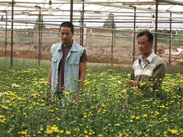 Điểm danh dàn diễn viên trong phim Việt mới Trang trại hoa hồng - Ảnh 1.