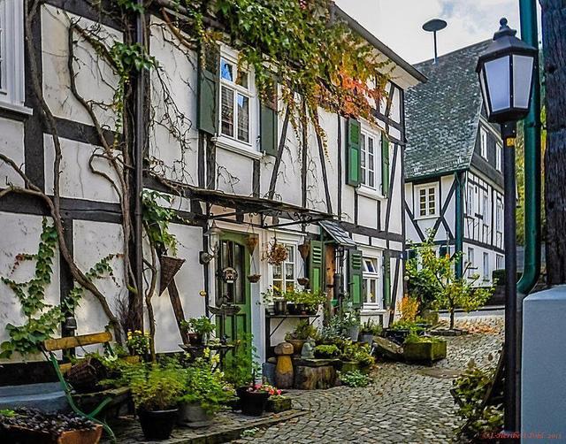 """Đến thị trấn """"trăm căn nhà giống nhau như một"""", hoa mắt nhìn mãi không ra - Ảnh 5."""