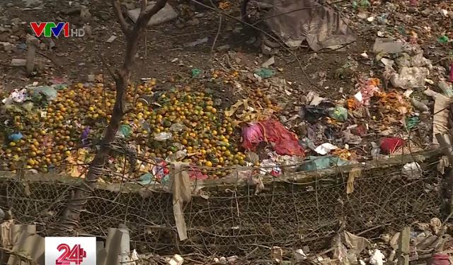 Chân cầu Long Biên ngập ngụa rác do mưa lớn kéo dài - Ảnh 2.