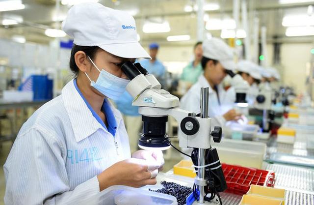Thành tựu khoa học, công nghệ và đổi mới sáng tạo góp phần phát triển kinh tế - xã hội - Ảnh 1.