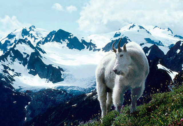Những điều bạn chưa biết về đỉnh núi Olympus thần thoại - Ảnh 9.