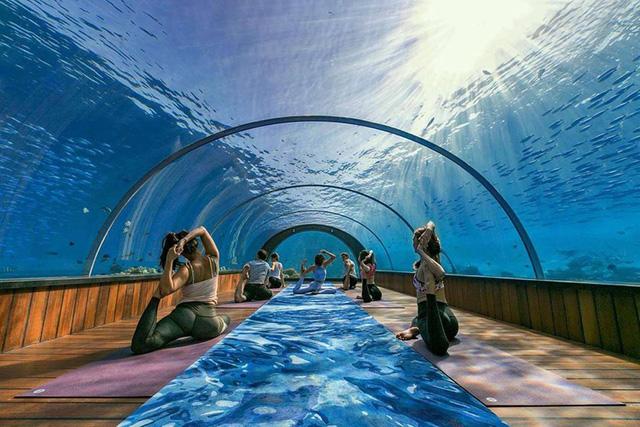 Những lớp học yoga đặc biệt nhất thế giới - Ảnh 1.