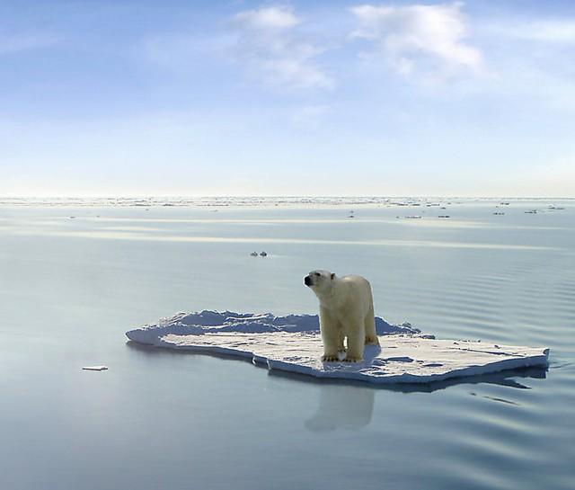 Con người sẽ sống sót như thế nào nếu Trái Đất nóng thêm 2 độ C? - Ảnh 2.