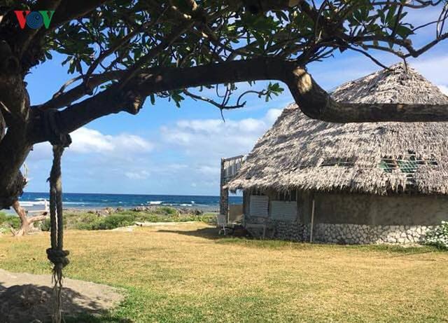 Khám phá Vanuatu - nơi có hàng nghìn người Việt xa xứ sinh sống - Ảnh 5.