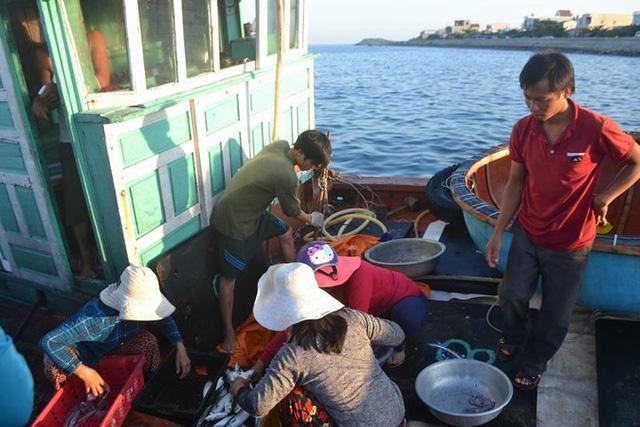 Đi chợ cá trên đảo Lý Sơn - Ảnh 3.