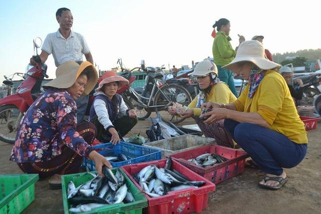 Đi chợ cá trên đảo Lý Sơn - Ảnh 5.