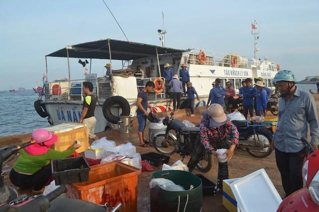 Đi chợ cá trên đảo Lý Sơn - Ảnh 10.