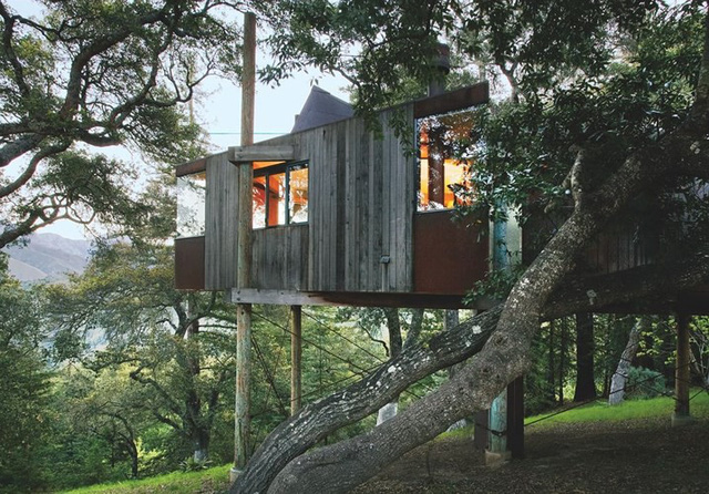 Những ngôi nhà trên cây tuyệt đẹp ai cũng muốn sống thử - Ảnh 14.
