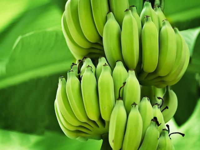10 lợi ích sức khỏe tuyệt vời của chuối xanh - Ảnh 9.
