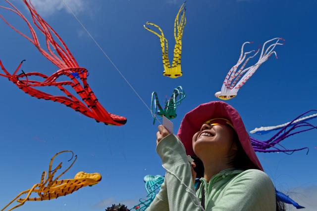Mãn nhãn Lễ hội diều quốc tế tại Berkeley, Mỹ - Ảnh 2.