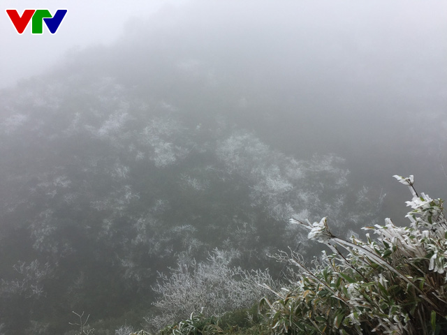 Băng tuyết tuyệt đẹp ở Sa Pa khiến du khách thích thú - Ảnh 10.