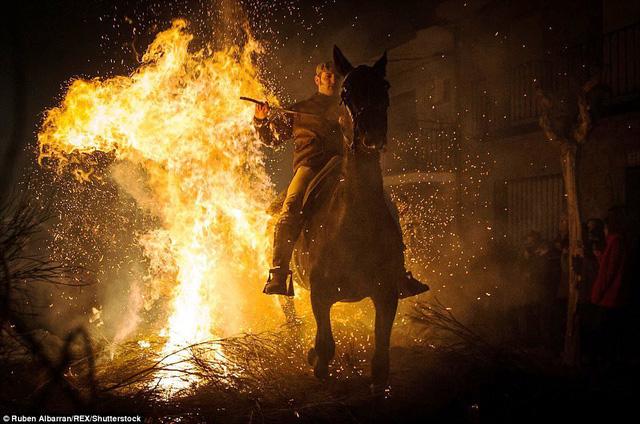 Lễ hội thử thách những chú ngựa ở Tây Ban Nha - Ảnh 12.
