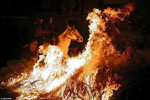Lễ hội thử thách những chú ngựa ở Tây Ban Nha - Ảnh 11.