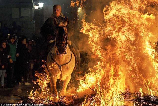 Lễ hội thử thách những chú ngựa ở Tây Ban Nha - Ảnh 8.