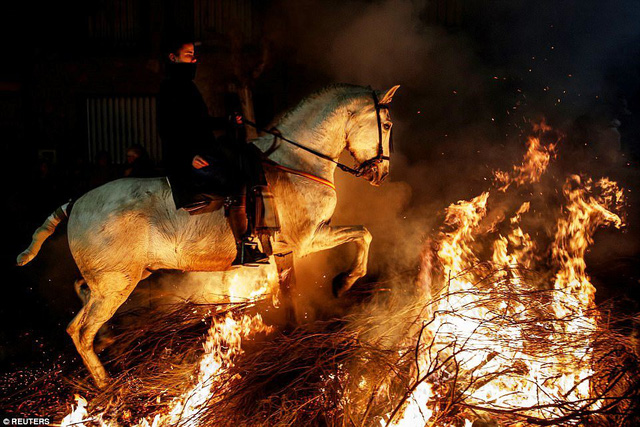 Lễ hội thử thách những chú ngựa ở Tây Ban Nha - Ảnh 7.