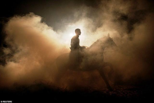 Lễ hội thử thách những chú ngựa ở Tây Ban Nha - Ảnh 5.