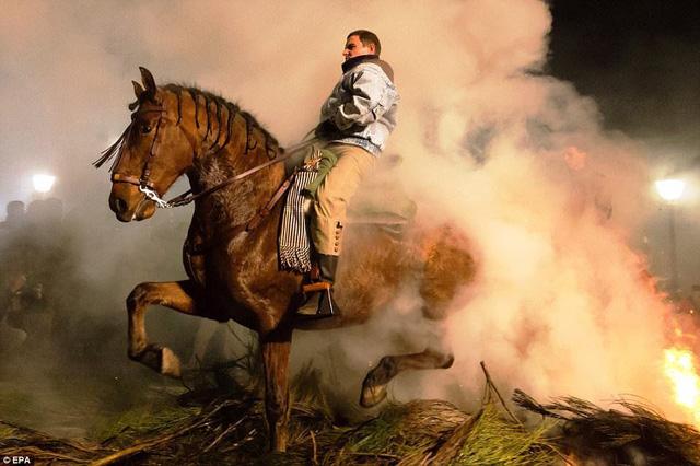 Lễ hội thử thách những chú ngựa ở Tây Ban Nha - Ảnh 3.