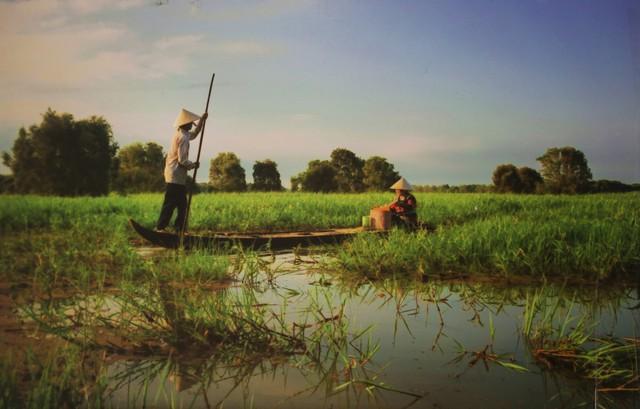 Tác phẩm về cột cảnh báo lũ giành giải nhất cuộc thi phim ngắn Vì một tương lai xanh 2017 - Ảnh 1.