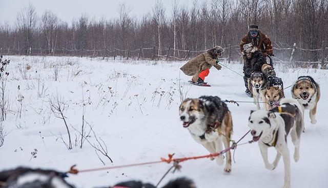 Xe chó kéo - Dịch vụ du lịch siêu hot ở Nga - Ảnh 5.