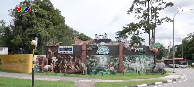 Singapore: Kế hoạch phát triển du lịch sinh thái gây nhiều tranh cãi - Ảnh 1.