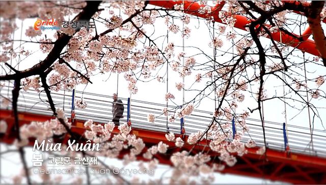 Khám phá 4 mùa rực rỡ của thiên đường du lịch Gyeongsangbuk - ảnh 1