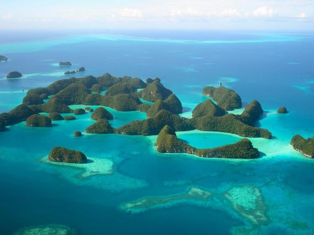 Lạc vào tiên cảnh khi bơi giữa hồ sứa Paula - Ảnh 3.