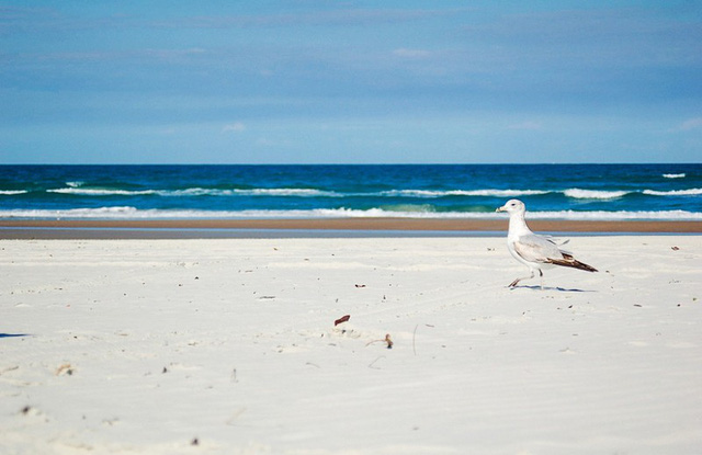 Những bãi biển dù rất đẹp nhưng du khách vẫn nên tránh xa - ảnh 4