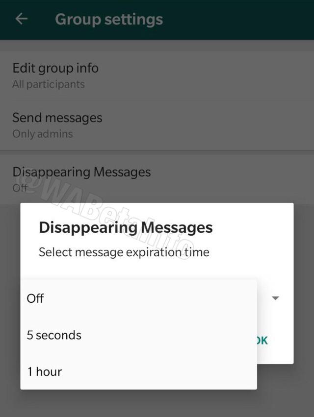 WhatsApp thử nghiệm tính năng tin nhắn tự hủy - Ảnh 1.