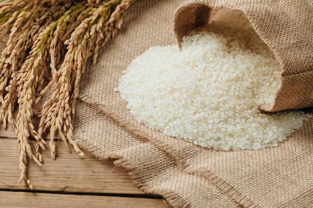 Thái Lan thực hiện chương trình đảm bảo giá gạo - Ảnh 1.
