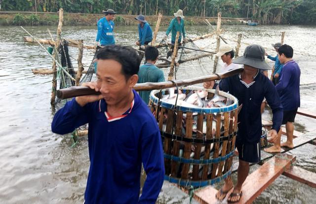 Mỹ tiếp tục là thị trường xuất khẩu thủy sản lớn nhất của Việt Nam - Ảnh 1.