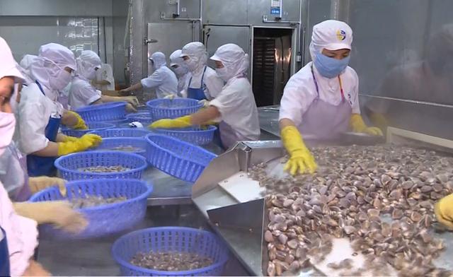 665 doanh nghiệp thủy sản Việt Nam được xuất khẩu vào Trung Quốc - Ảnh 1.