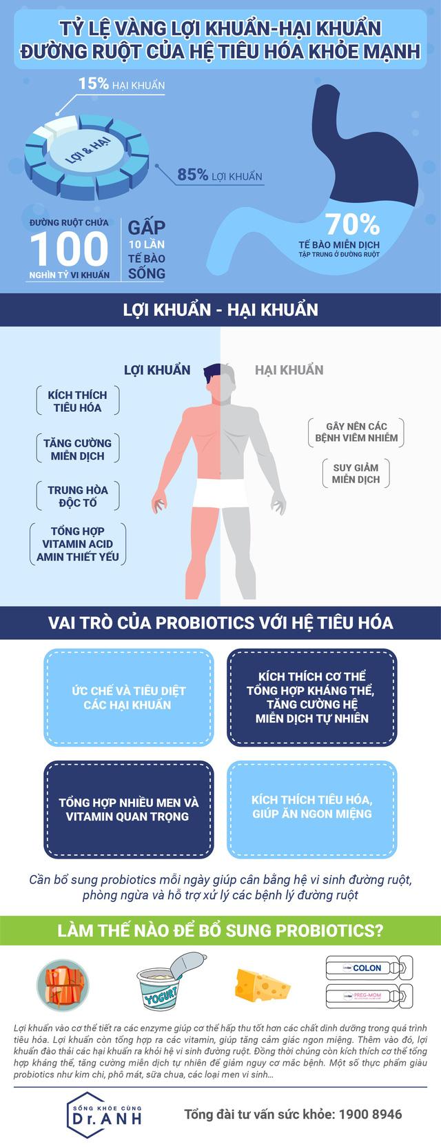 Tỷ lệ vàng của lợi khuẩn và hại khuẩn trong đường ruột con người - Ảnh 1.