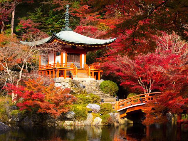 Xốn xang trước vẻ đẹp rực rỡ của mùa thu trên thế giới - Ảnh 3.