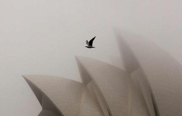Vẻ đẹp của các thành phố trên thế giới khi chìm trong sương sớm - ảnh 14