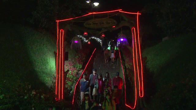 Lễ hội ánh sáng lần đầu xuất hiện tại Đà Lạt - Ảnh 4.